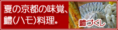 hamo_234_60_dukushi.jpg